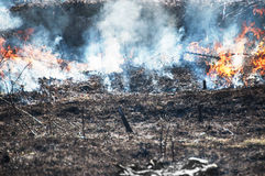 Bushfire Royalty Free Stock Photography