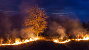 Bushfire at night stock photos