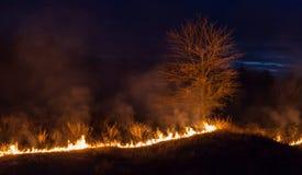 Bushfire at night Stock Photo