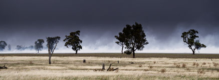Bushfire Panorama Royalty Free Stock Photo