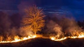 Bushfire przy nocą zdjęcia stock