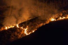 Bushfire przy nocą Fotografia Stock