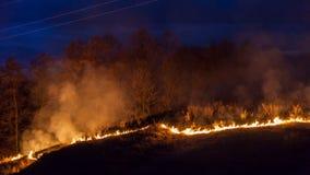 Bushfire przy nocą Zdjęcie Stock