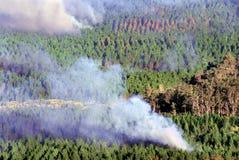 Bushfire Queensland Australia Royalty Free Stock Photography