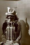 Bushi motif Royalty Free Stock Image