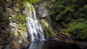 Bushkill Falls. Close-up view of the main falls at Bushkill Falls, PA Stock Image