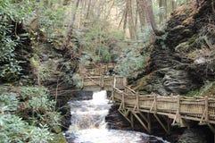 Bushkill Falls Royalty Free Stock Photos