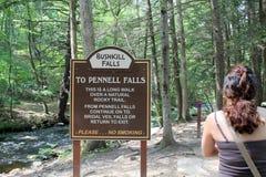 Bushkill falls Stock Photography