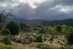 Bushland with black clouds and sun coming thru the clouds, shining on a dried out river bed stock photography
