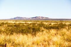 Bushland a distanza Fotografia Stock Libera da Diritti