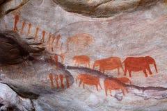 Bushman paintings. Bushman cave paintings in Cederberg, Republic of South Africa Royalty Free Stock Image