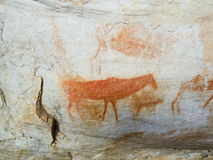 Bushman cave paintings in Cederberg Royalty Free Stock Image