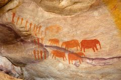 Bushman elephant paintings. In mountains. Shot in Cederberg Mountains, Western Cape, South Africa Royalty Free Stock Photography