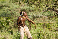 Bushman Hadzabe. LAKE EYASI, TANZANIA - FEBRUARY 18: An unidentified Hazabe bushman with bow and arrow during hunting on February 18, 2013 in Tanzania. Hazabe Stock Images