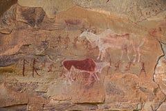 Bushman Rock Art 3. Bushman Rock Art in the `War Cave` near Injisuthi in the Drakensberg South Africa Stock Photography
