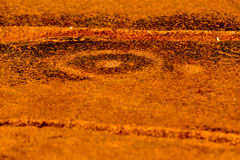 Bushman Rock Engravings - Namibia Royalty Free Stock Photo