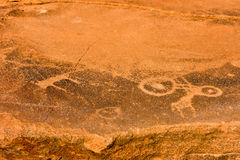 Bushman Rock Engravings - Namibia Royalty Free Stock Photography