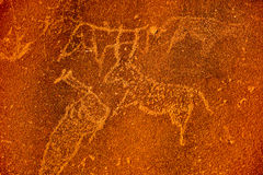Bushman Rock Engravings - Namibia Royalty Free Stock Images
