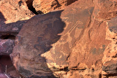 Bushman Rock Engravings - Namibia Royalty Free Stock Photos
