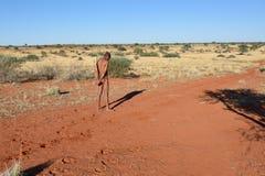 Bushmen hunter in the Kalahari desert, Namibia Stock Image