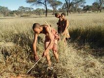 Bushmen hunters in a fields search Stock Images