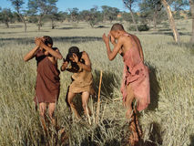 Bushmen hunters in a fields search Stock Photo