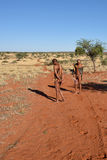 Bushmen hunters in the Kalahari desert, Namibia Stock Images