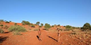 Bushmen hunters in the Kalahari desert, Namibia Royalty Free Stock Photos