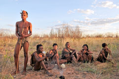 Bushmen in the kalahari desert Royalty Free Stock Image
