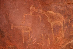 Bushmen Rock Engravings. Twyfelfontein Royalty Free Stock Photography