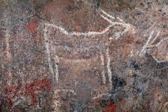 Bushmen rock painting - South Africa stock images