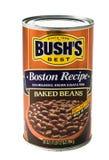 Bushs backte Bohnen Stockfotografie
