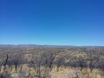 Bushveld immagine stock