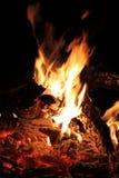 Bushveld Feuer Lizenzfreie Stockfotografie