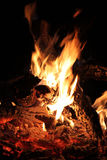 Bushveld Fire. Picture of Warm Flaming Bushveld Fire at Night Royalty Free Stock Photography