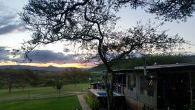 Bushveld-Haus lizenzfreies stockbild