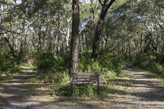 Bushwalking en el parque nacional de Booderee NSW australia Fotografía de archivo