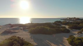 Bushy beach on background of sea and blue sky. Art. Top view of beautiful beach with green bushes and quiet sea. Reflecting sun stock video footage