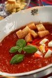 Bushy tomatoes soup royalty free stock photos