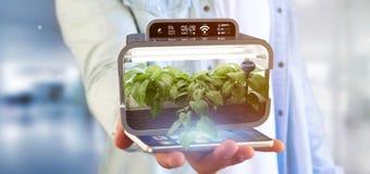 Businesmann holding a Digital vegetal plant connected. View of a Businesmann holding a Digital vegetal plant connected royalty free stock images