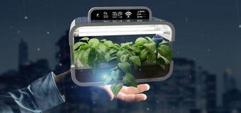 Businesmann holding a Digital vegetal plant connected. View of a Businesmann holding a Digital vegetal plant connected royalty free stock photos