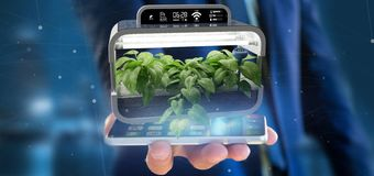 Businesmann holding a Digital vegetal plant connected. View of a Businesmann holding a Digital vegetal plant connected stock photography