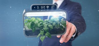 Businesmann holding a Digital vegetal plant connected. View of a Businesmann holding a Digital vegetal plant connected royalty free stock photography