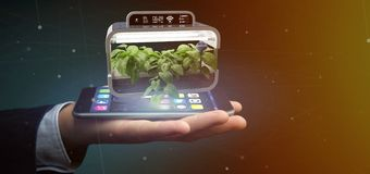 Businesmann holding a Digital vegetal plant connected. View of a Businesmann holding a Digital vegetal plant connected royalty free stock photo