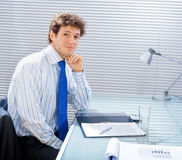 Business advisor at office Royalty Free Stock Image