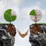 Business Agreement Concept. And global connection financial success symbol as two trees shaped as tree pie charts on separate divided cliffs joining roots Stock Photo