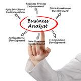 Business Analyst. Presenting applications for Business Analyst royalty free stock images
