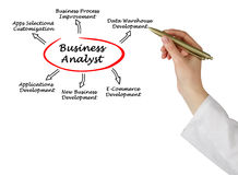 Business Analyst. Presenting diagram of Business Analyst royalty free stock images