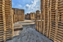 Business area with large stacks of euro cargo pallets Stock Image