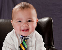 Business Baby Portrait Stock Images